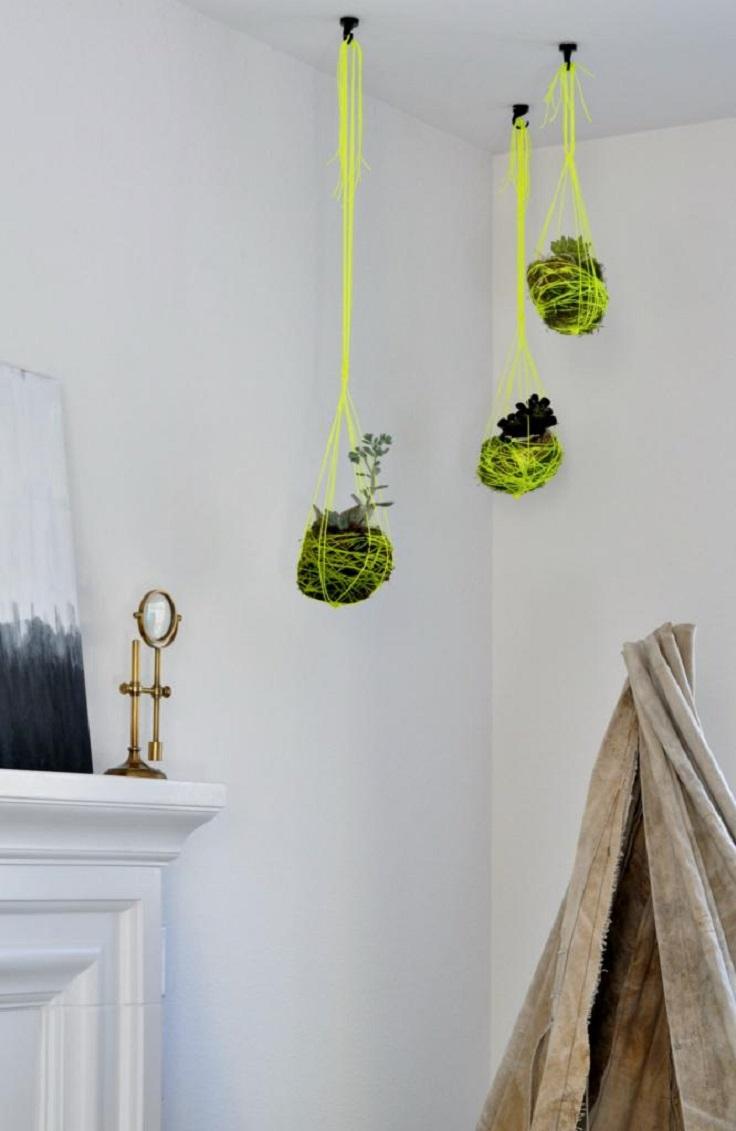 DIY-Succulent-Hanging-Gardens