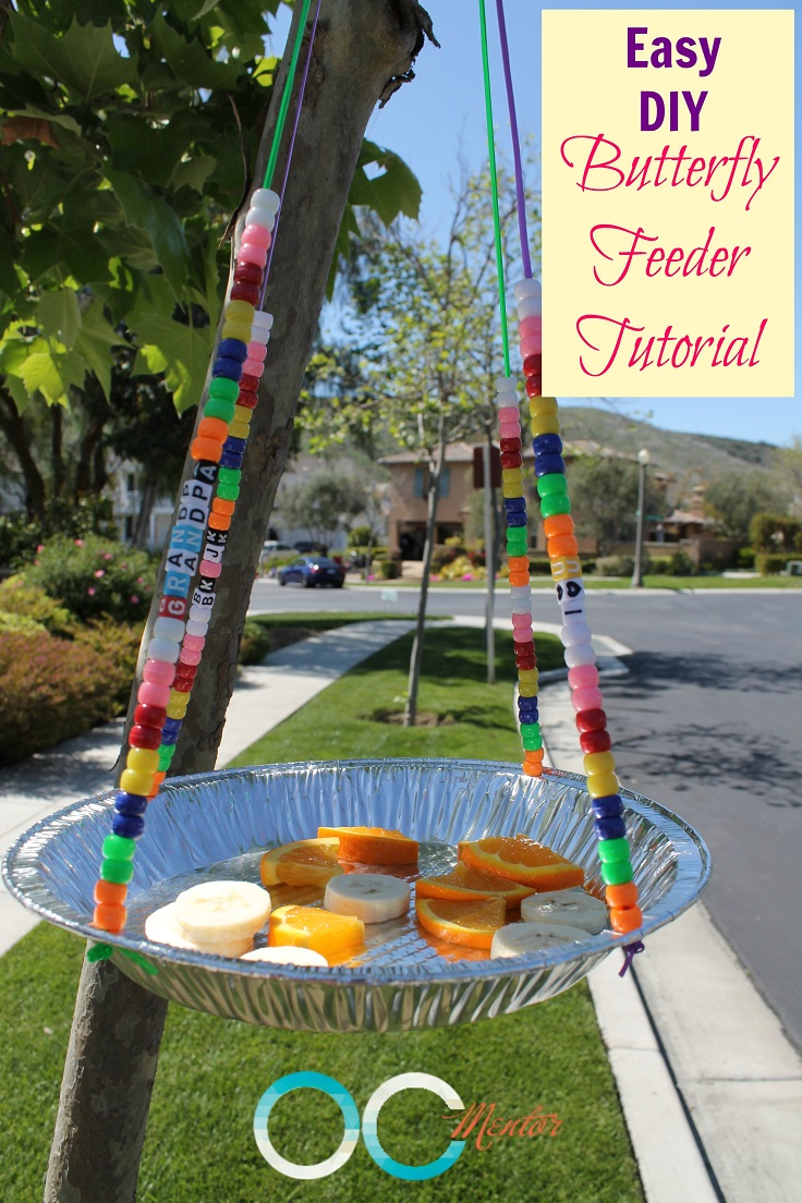 feeder 10 easy ways to create one in less than an hour