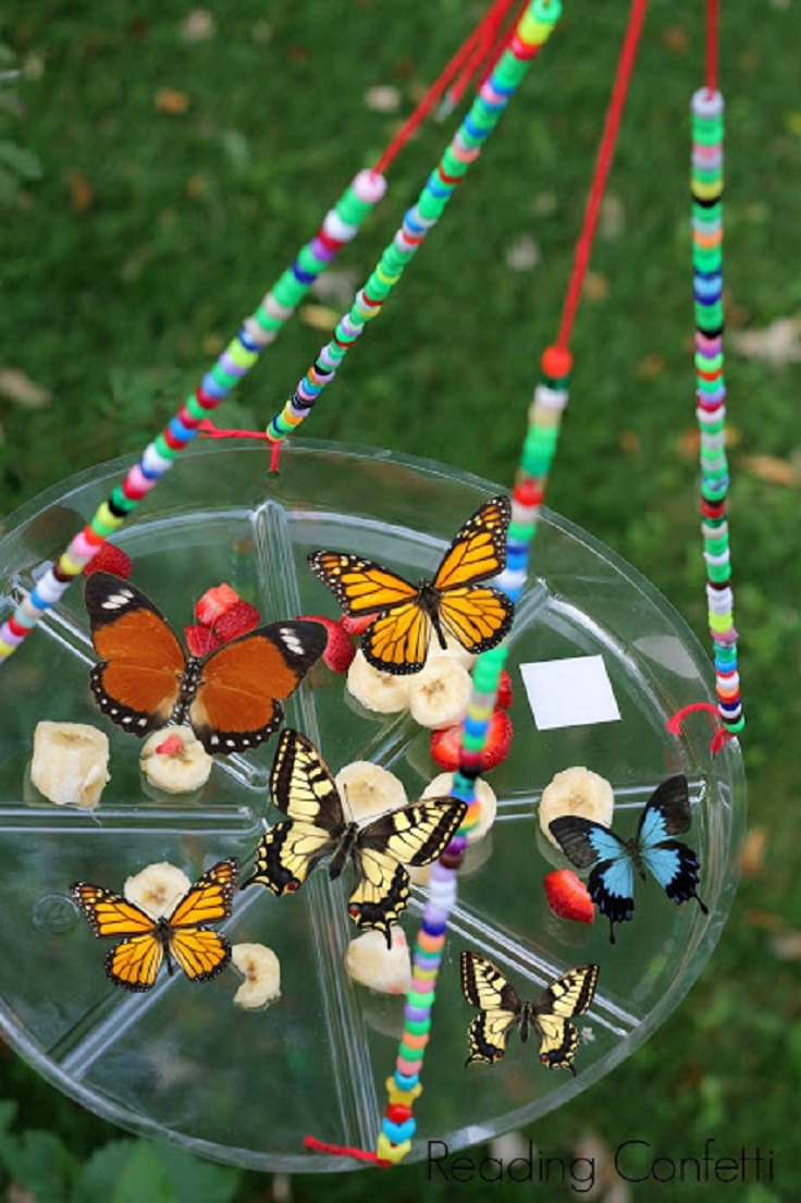 Easy-Kid-Made-Butterfly-Feeder
