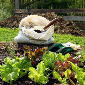 TOP 10 Things to Know About Home Composting | Top Inspired