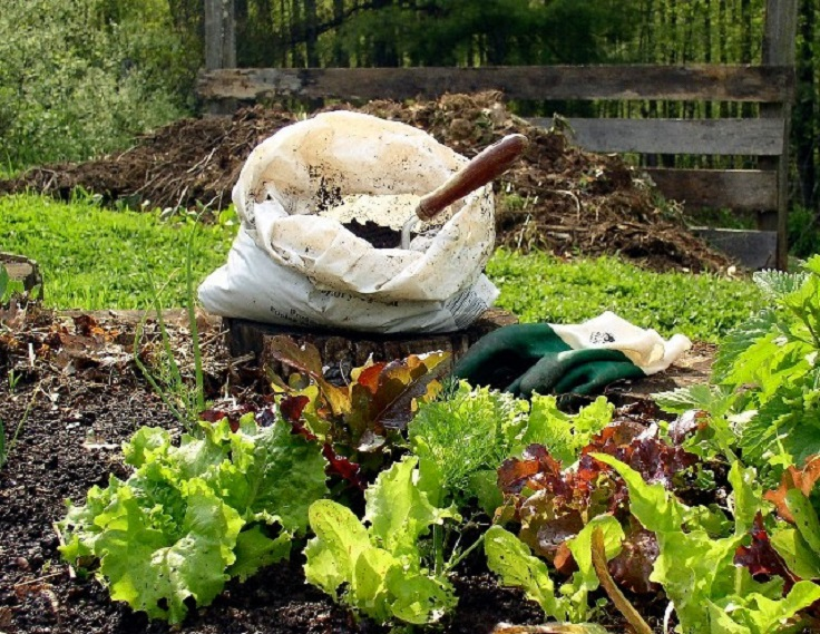 Top 10 things to know about home composting for Compost soil bags