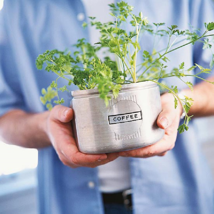 Kitchen-Canisters-as-Herb-Planters