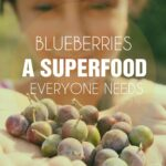 blueberries-superfood-150x150