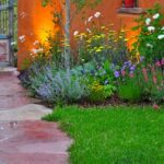 perennial-flowers-150x150