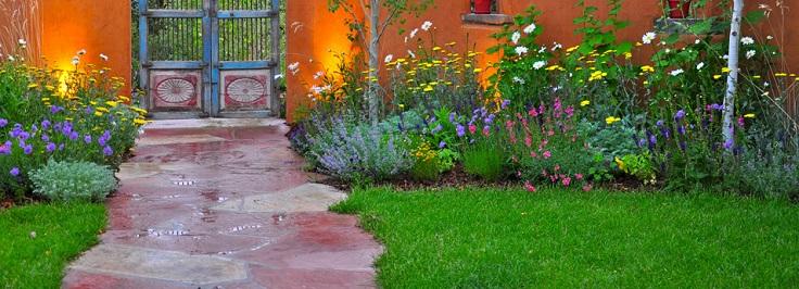 Top 10 Best Perennials for Your Garden | Top Inspired