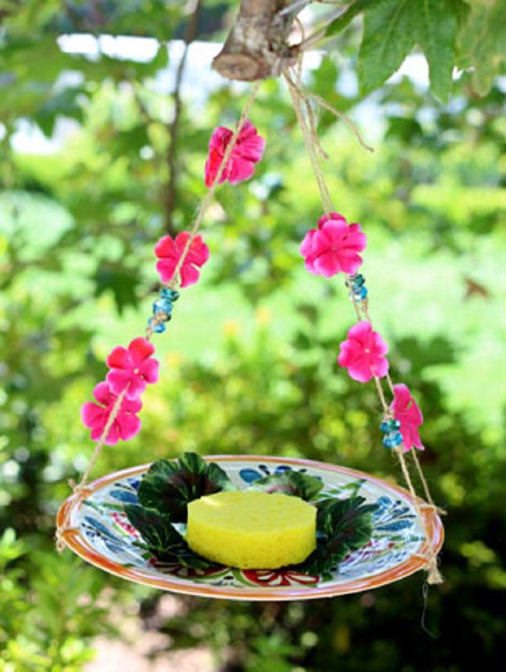 plate-butterfly-feeder