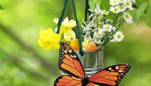 tin-can-butterfly-feeder
