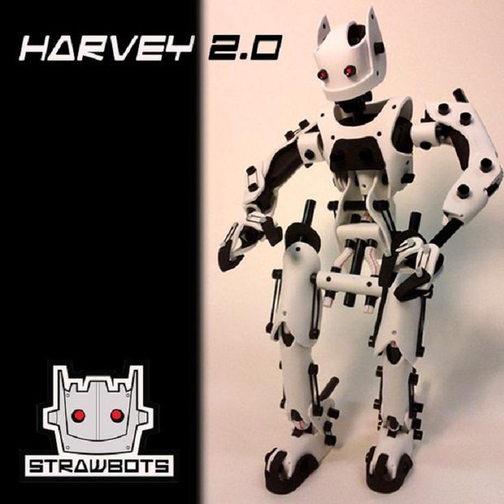 4-Strawbots-Harvey