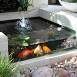 Top 10 Garden Aquarium and Pond Ideas to Decorate Your Backyard | Top Inspired
