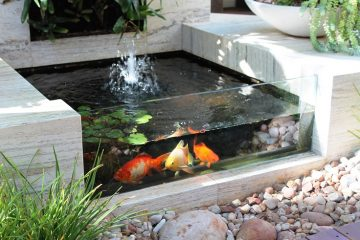 5-Creative-Aquarium