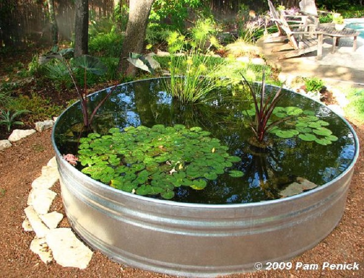 8-Stock-Tank-Container-Pond