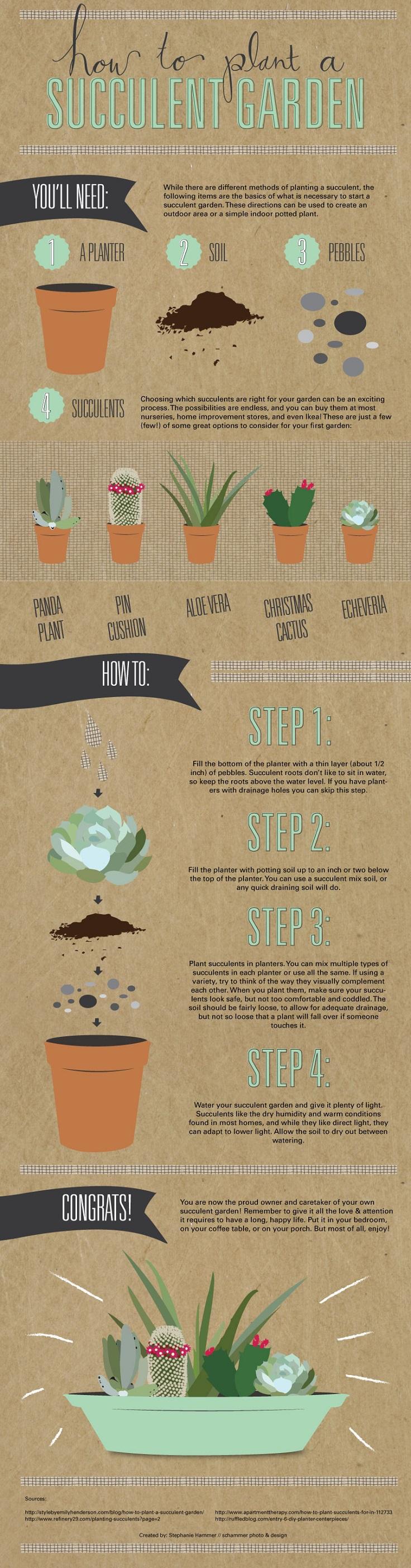 top 10 diy outdoor succulent garden ideas top inspired