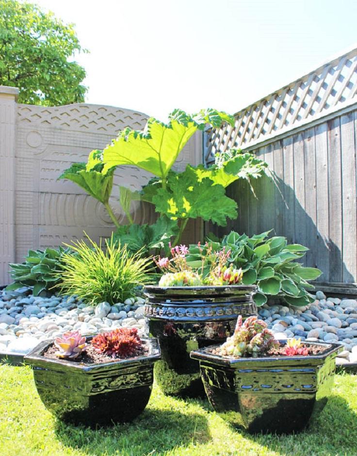 Mini-succulent-garden