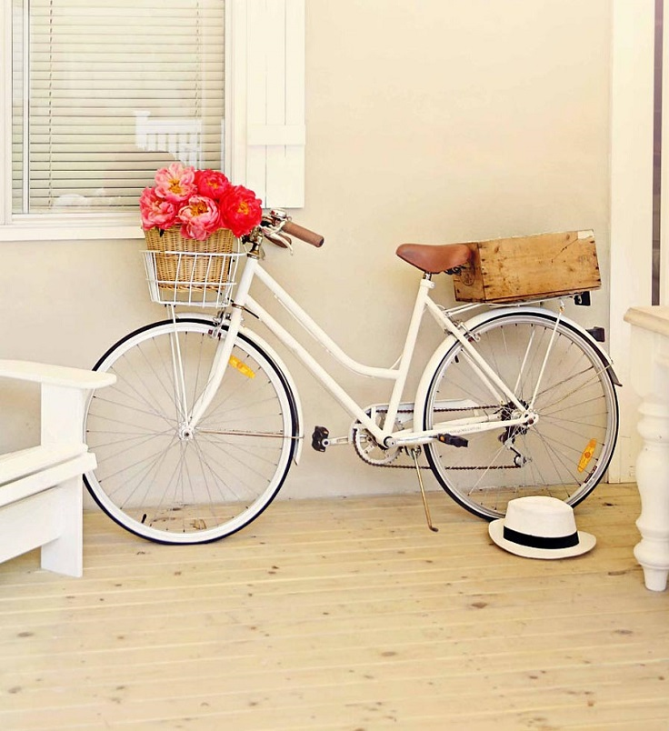 the-vintage-bike