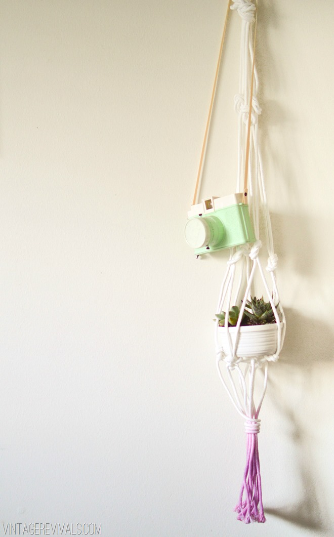 Orchid-Dyed-Macrame-Planter