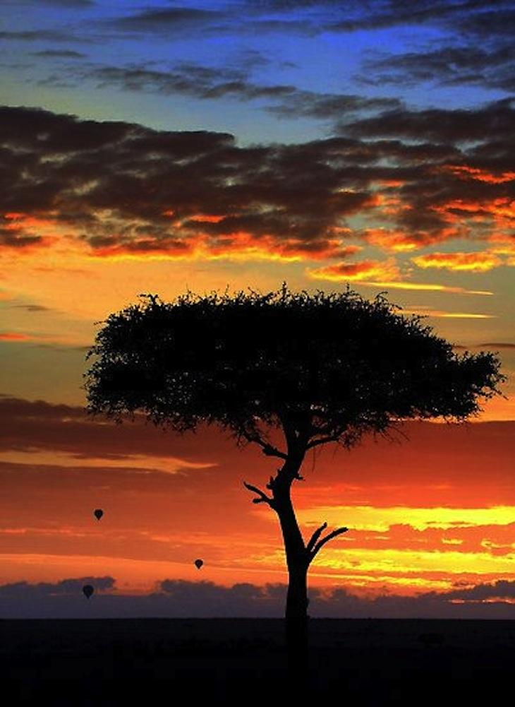 top-africa