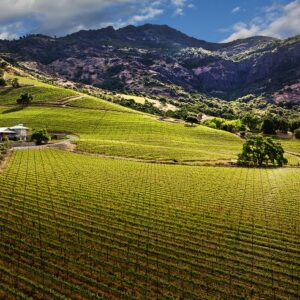 Top 10 Best Vineyards In Napa Valley To Visit | Top Inspired