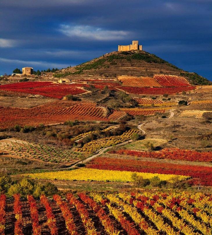 TOP 10 Wine Tasting Destinations in Europe | Top Inspired