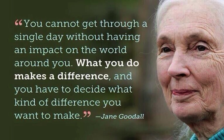 TOP 10 Things to know about Jane Goodall - Top Inspired