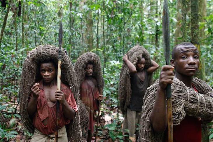 top-10-pygmy