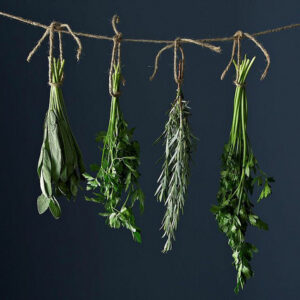 TOP 10 Inventive Ways to Preserve Herbs | Top Inspired
