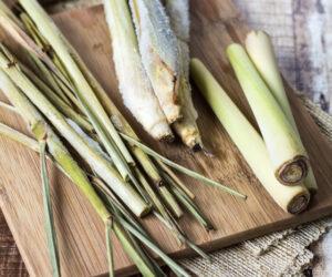 Top 10 Beautiful Lemongrass Recipes