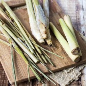 TOP 10 Beautiful Lemongrass Recipes | Top Inspired