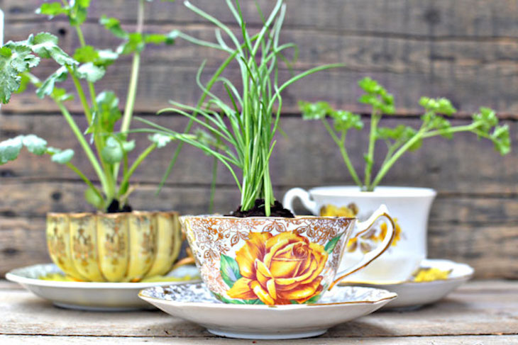 topteacup-herb-favors-picture