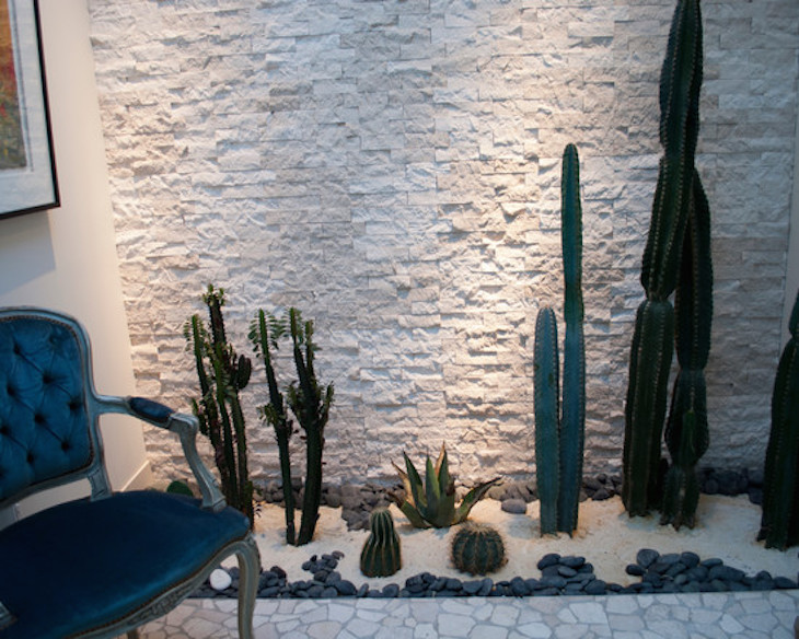 TOP 10 Beautiful Cactus Gardens for the Black Thumb Top Inspired