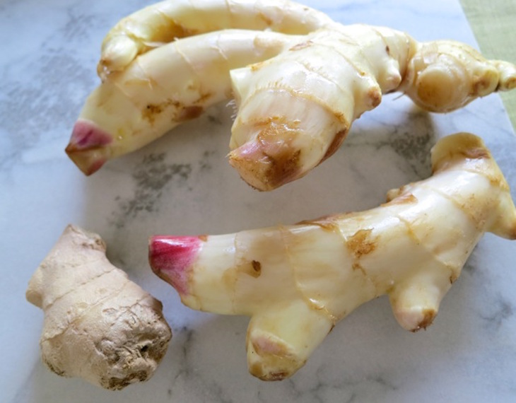 TOP 10 Tips on How To Grow Your Ginger Indoors