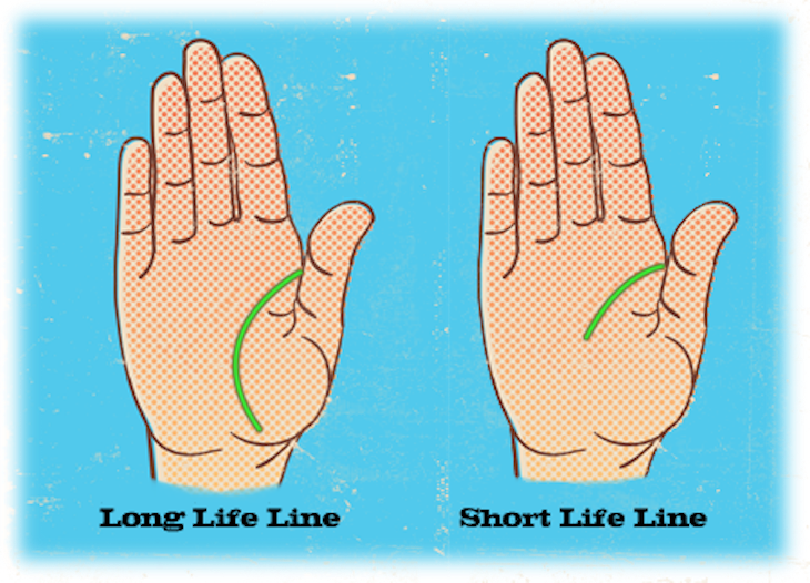 Top 10 Basic Palm Reading Guidelines Top Inspired