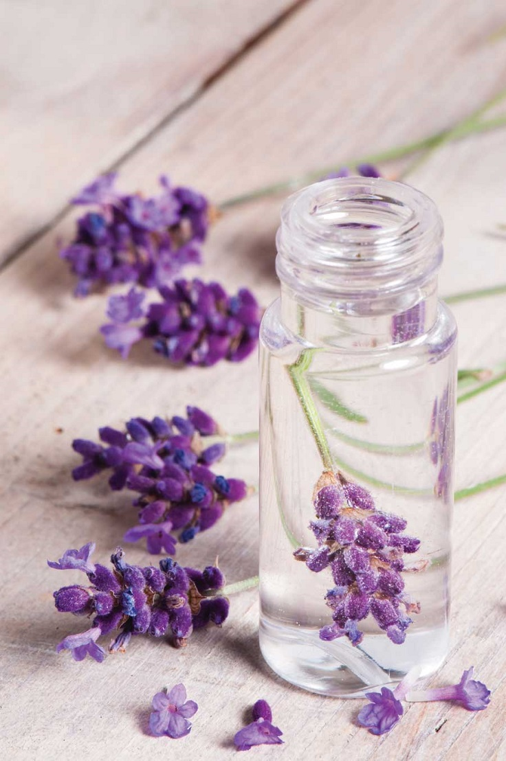 Top 10 DIY Beauty Products with Lavender Essential Oil