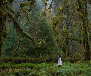Top 10 Most Beautiful Natural World Heritage Sites in the US