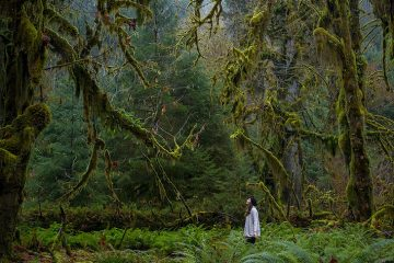 On my trip up north to Washington, we discovered a very unique location in the Olympic National Park. I couldn't believe my eyes when we first arrived. This was something so out of this world, and nothing I'd expect to find in the USA. We only had an hour to explore before sundown.  We immediatly fell in love with this Rain Forest and the feeling we got being inside.  Shot using a Canon 5Dmk3 with a Canon 24-70 2.8