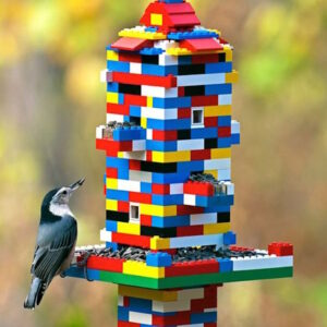TOP 10 DIY Bird Feeders To Make With Kids | Top Inspired