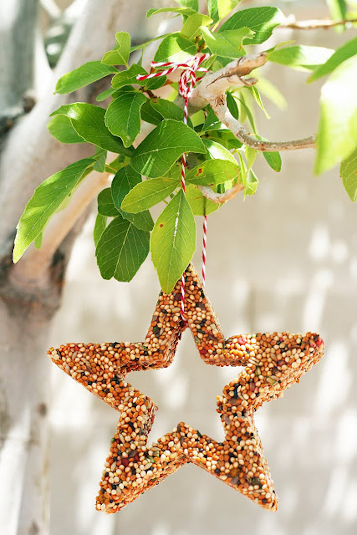 Top 10 diy bird feeders to make with kids top inspired for How to make a cool bird feeder