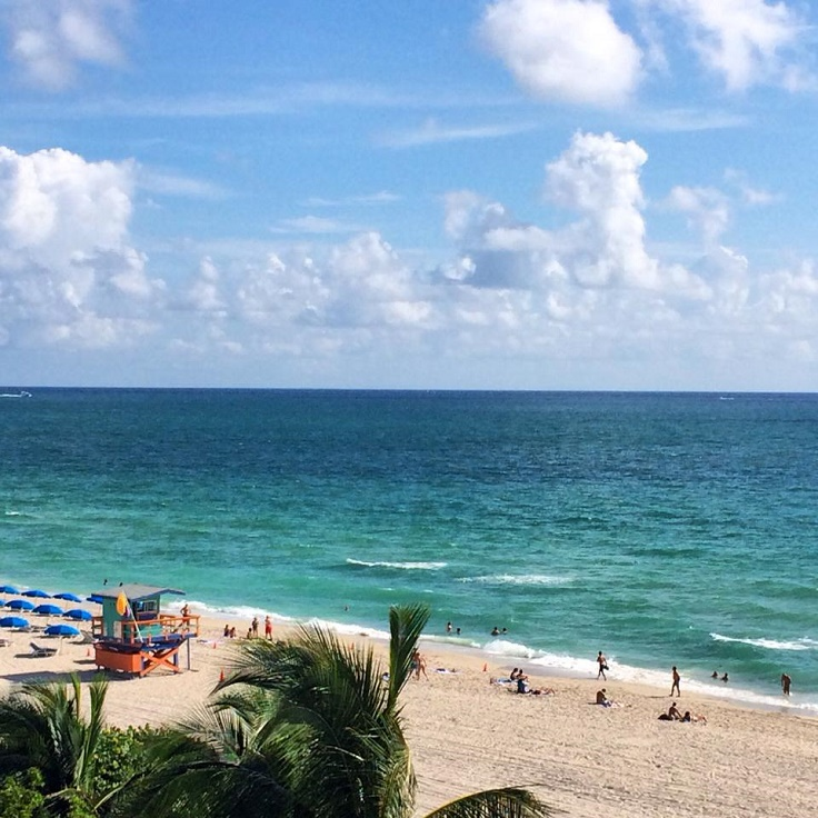 Great Places Eat Virginia Beach: Top 10 Amazing Places To Visit When You're In Miami