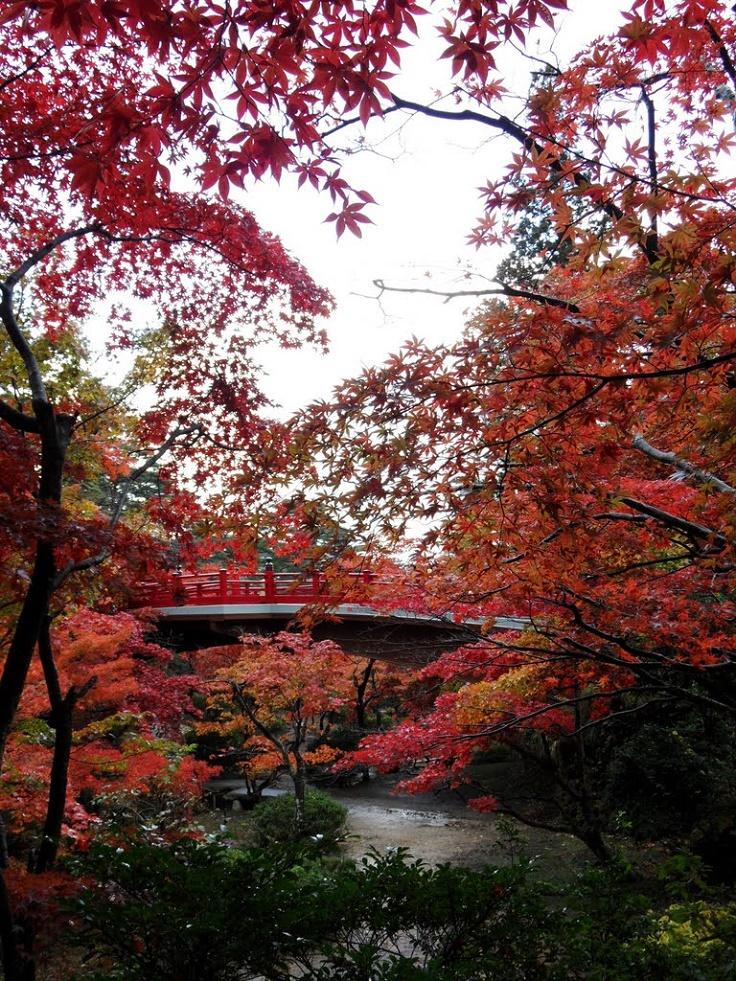 Yahiko-Park-Niigata