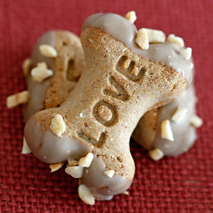 Top 10 Delicious Treats Your Dog Will Love