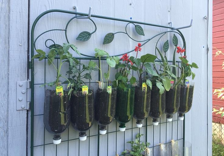 DIY-Vertical-Garden-with-Bottle-Pots