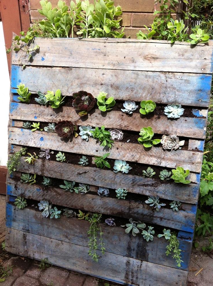Top 10 DIY Vertical Garden Ideas to Try This Spring - Top ...