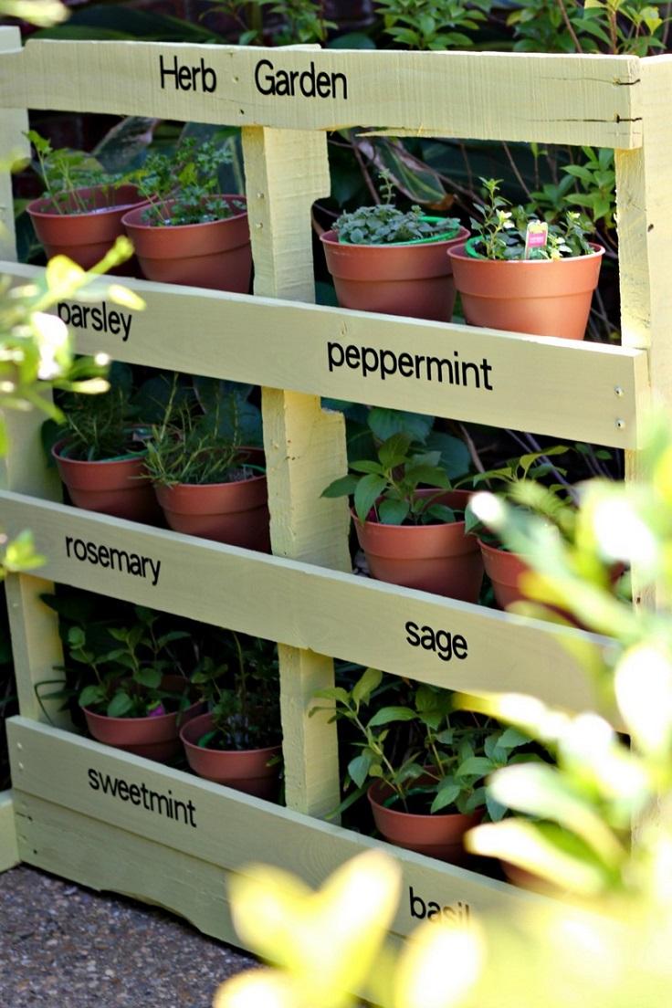 Pallet-Vertical-Herb-Garden
