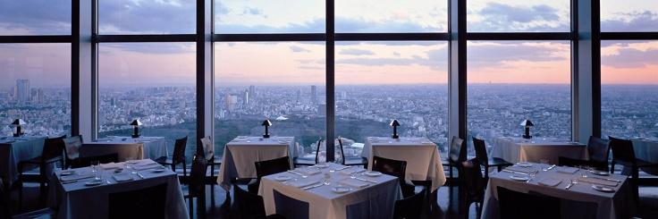 Park-Hyatt-Tokyo-New-York-Grill-window-view