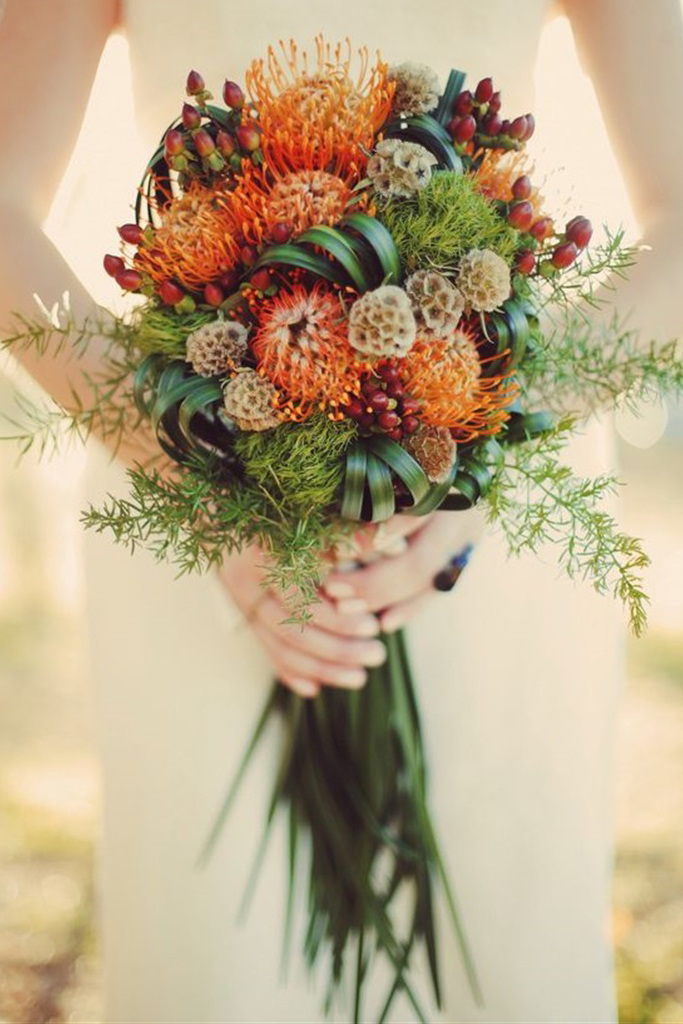 Perfect-Proteas