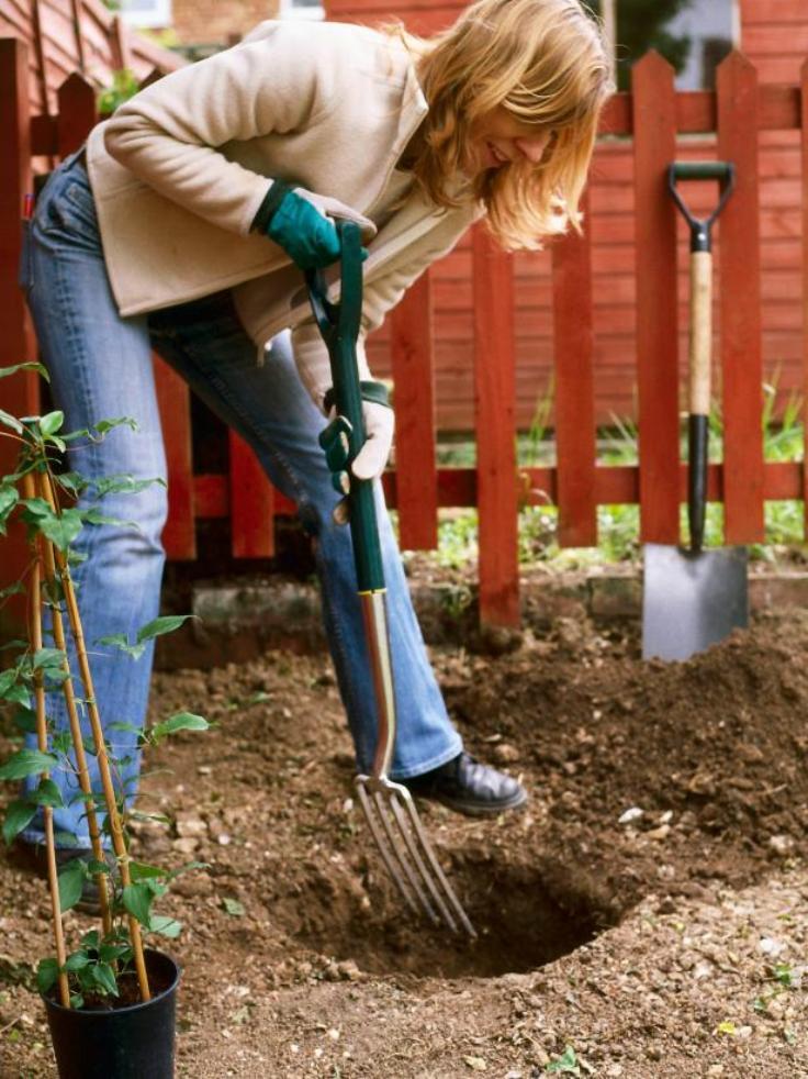 Planting-info