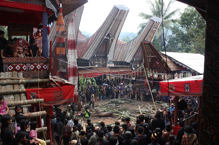 TOPTana_Toraja_Salu_funeral_6823105668