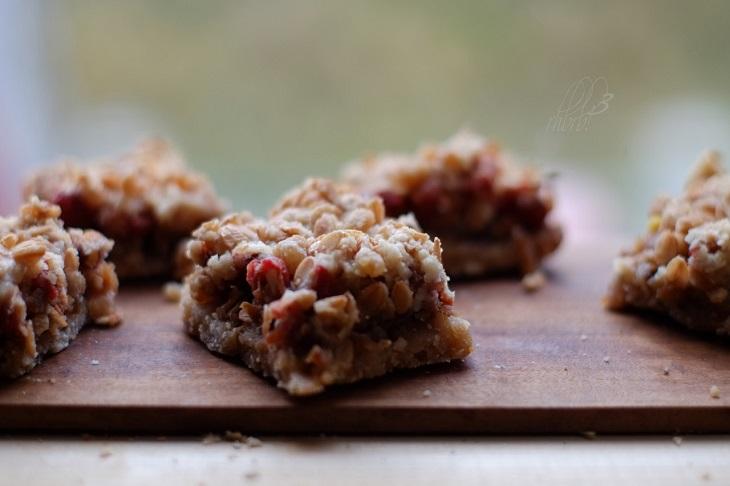Aronia-Berry-Recipes1