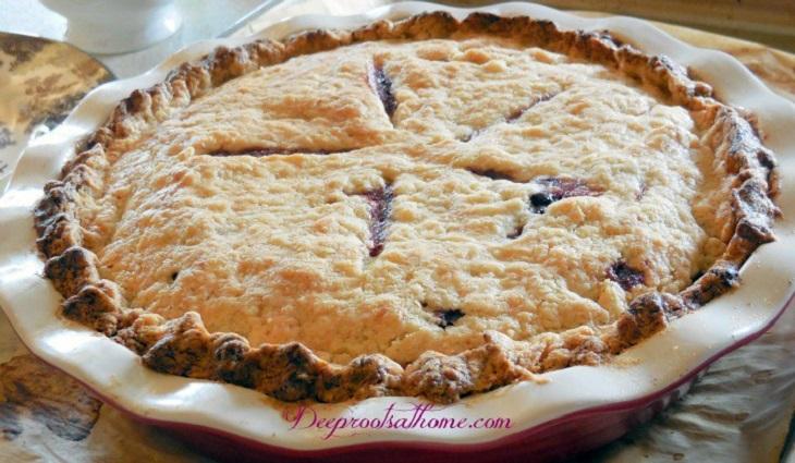 Aronia-Berry-Recipes4