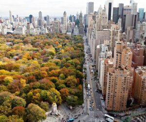 Top 10 Autumn in New York Photos That Will Make You Wish You Were There