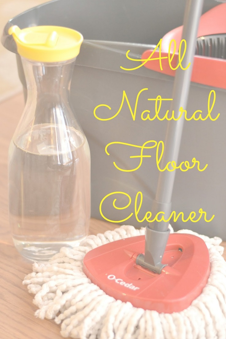 Top 10 Eco-Friendly DIY Cleaning Products That Will Save You Money